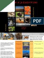 9. Amenazas a La Biodiversidad