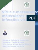 Vírus e Mecanismos Moleculares Das Infecções Virais (1)