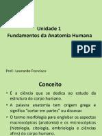 Unidade 1 Fundamentos Da Anatomia Humana- Prof Leonardo Francisco.ppt(3)