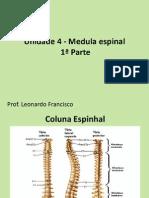 Unidade 4 - Medula Espinhal-Prof Leonardo Francisco
