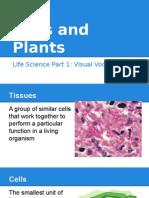 crystal life science vis vocab part 1  cells   plants