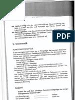 kifejezések.pdf