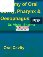 1 Anatomy of Oral Cavity Pharynx Oesophagus