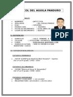 c.v. Jafet Del Aguila Operador Maquinaria Pesada