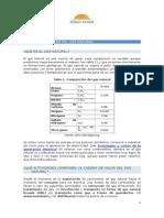 12_1_la_cadena_del_gas_natural.doc