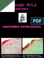DOCT Histo 2014