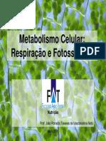 Metabolismo Celular- Fotossintese e Respiração