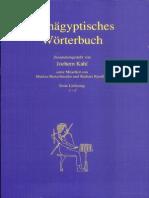 Fruhagyptisches worterbuch