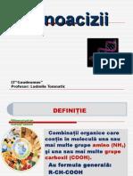aminoacizi_slide_ludmila_tomnatic.ppt