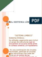 sistema Limbico Yunuen Guillen
