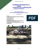 COMPORTAMIENTO MATERNO DE LA CERDA Y SUS IMPLICANCIAS EN LA PRODUCCION