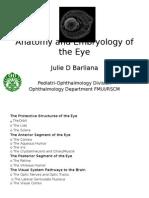Anatomyandembryologyoftheeye20111 121207161433 Phpapp02 (1)