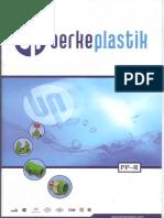 ppr-ing-2010