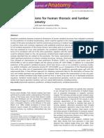Prediction equations for human thoracic and lumbarvertebral morphometry