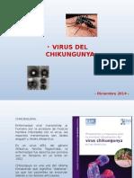 Chikungunya San Vicente 2014