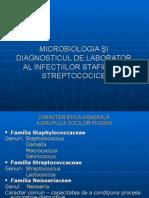 Stafilo-Strepto_07