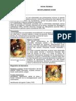 micoplasmosis_aviar.pdf