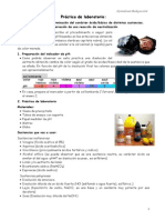 Practica_AcidosyBases_marcadores_gybu.pdf