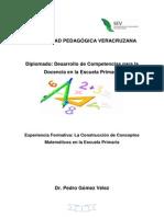 Experiencia Formativa Matemáticas