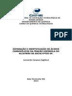 SEPARAÇÃO E IDENTIFICAÇÃO DE ÁCIDOS CARBOXÍLICOS DA FRAÇÃO SIRINGILA DO ALCATRÃO DE EUCALYPTUS SP.