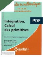 Intégration, Calcul Des Primitives