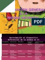 Aproximacion General a La Anemia Neonatal