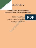 Orígenes y Desarrollo de Mesoamerica