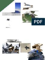 Imagenes Para Secuencia Animales Del Mar