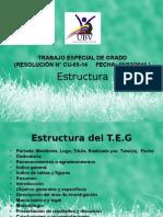 Estructura del proyecto para TSU y Licenciado en Gestion Ambiental UBV