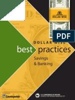 DollarWise Best Practices