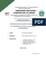 Informe Original de Hidrocolides
