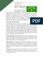 Izquierda Regionalista Autonoma