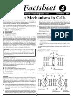 116 - Transport Mechanisms in Cells