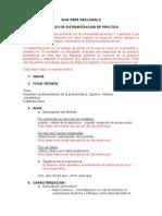 Proceso de Sistematizacion de Práctica (1)