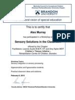 Alex Murray Workshop Certificate Sensory Solutions W15