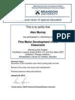 Alex Murray Workshop Certificate Fine Motor W15