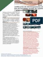 Informe Micro practica 8y 9