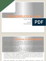 Xochimilco Al Dia