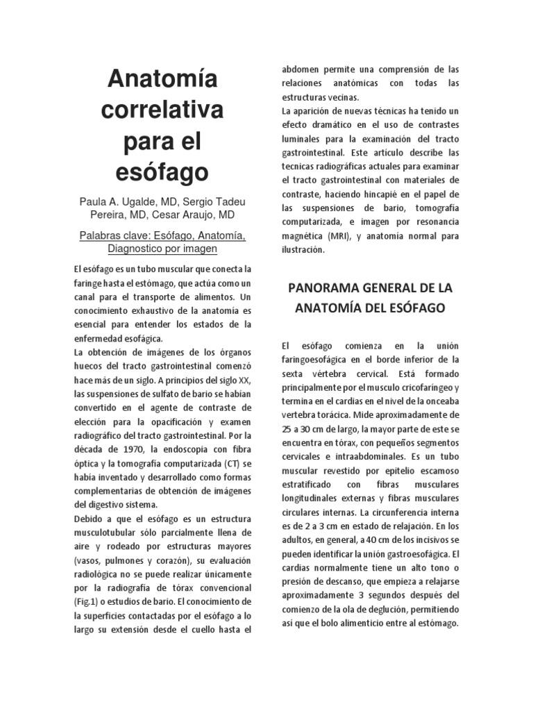 Anatomía correlativa para el esófago