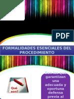6. Formalidades Esenciales Del Procedimiento