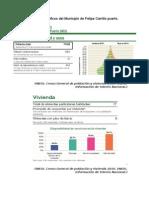 Aspectos demográficos del Municipio de Felipe Carrillo puerto.docx