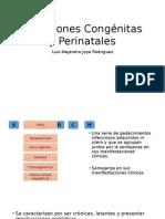 Infecciones Congénitas y Perinatales