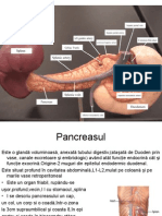 Curs 5 28.03.2014 pancreas2013