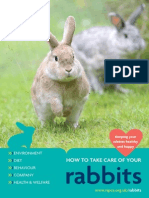 Rabbit Care Booklet