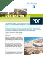 Biogeomorphology.scherm