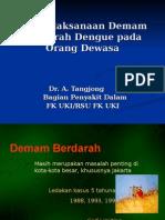 DHF Dr Bram Tangjong