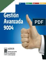 Características ISO 9004
