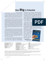 Small Cap 400.pdf