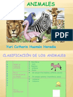 animales clasiicación.pptx
