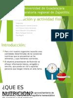 Nutrición y Actividad Física Precentacion